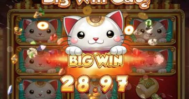 big win cat slot