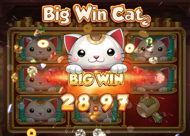 Play' n GO's Big Win Cat Slot