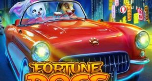 Fortune Dogs Slot