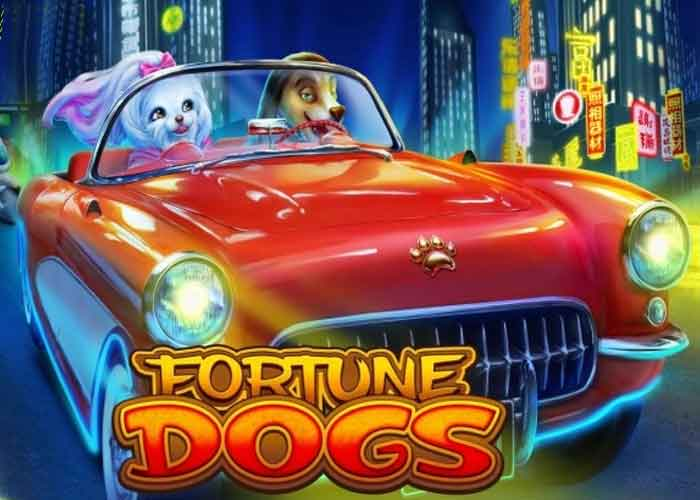 fortune-dogs-slot