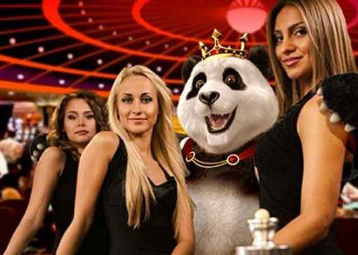 Highroller Casinos Royal Panda