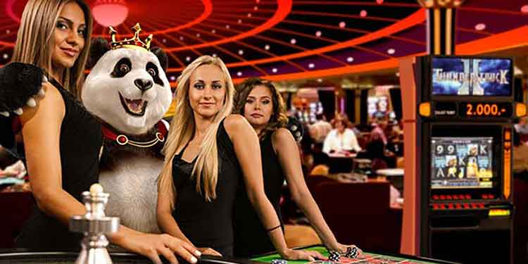 royal panda casino test live casino