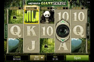 Der Untamed Giant Panda Slot